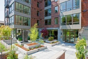 Duncan Place Condominium begin sales