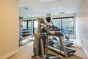 Avenue One fitness